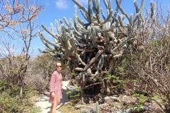 Beau cactus à côté de ma belle femme. Au fait on a fêté nos deux ans de mariage hier.